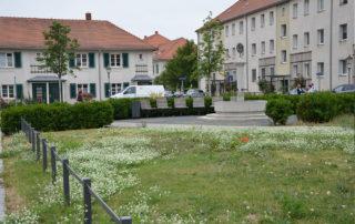 Heutiges Bild des Dresdner Brunnenplatzes mit Wappenbrunnen, Gehölz- und Wiesenflächen, Ausführung 2014