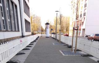Fertiggestellter Zustand der Baumpflanzung und Fußweg aus Sächsischer Wegedecke